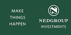 Nedgroup_Investments_logo